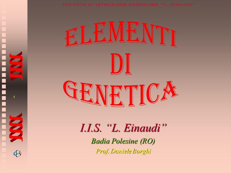 I.I.S. L. Einaudi Badia Polesine (RO) Prof. Daniele Borghi