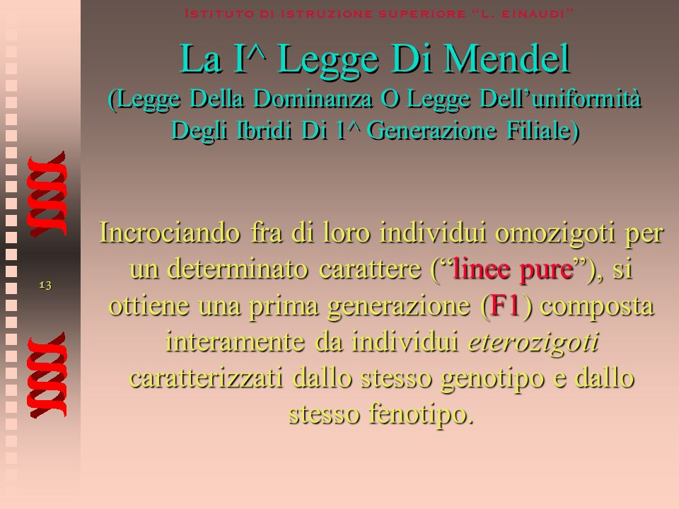 La I^ Legge Di Mendel (Legge Della Dominanza O Legge Dell'uniformità Degli Ibridi Di 1^ Generazione Filiale)