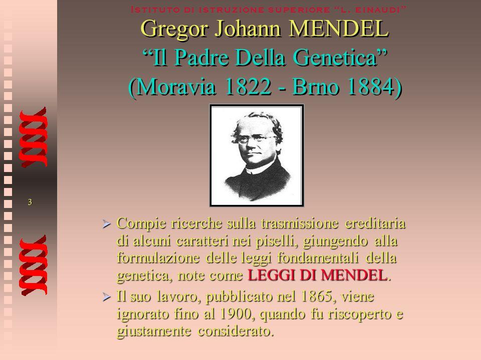 Gregor Johann MENDEL Il Padre Della Genetica (Moravia 1822 - Brno 1884)