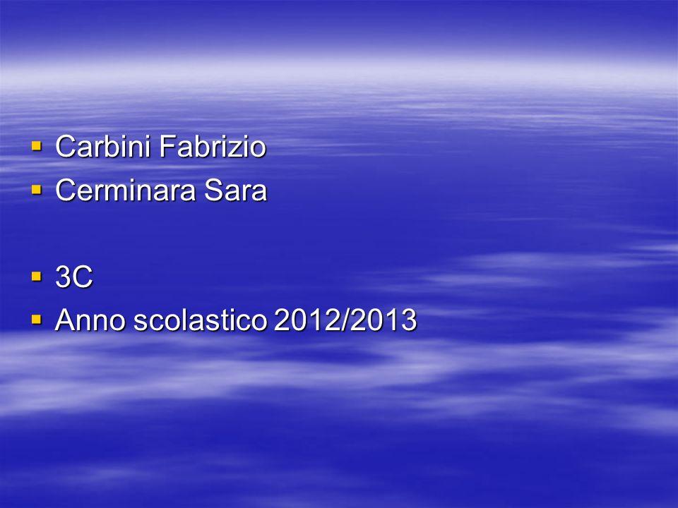Carbini Fabrizio Cerminara Sara 3C Anno scolastico 2012/2013