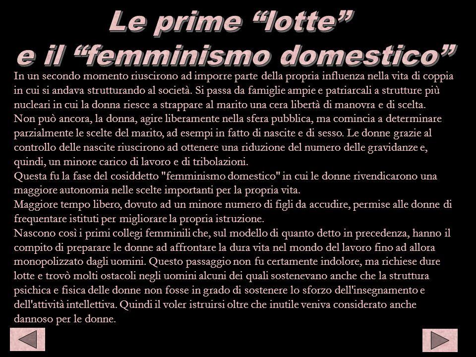 e il femminismo domestico