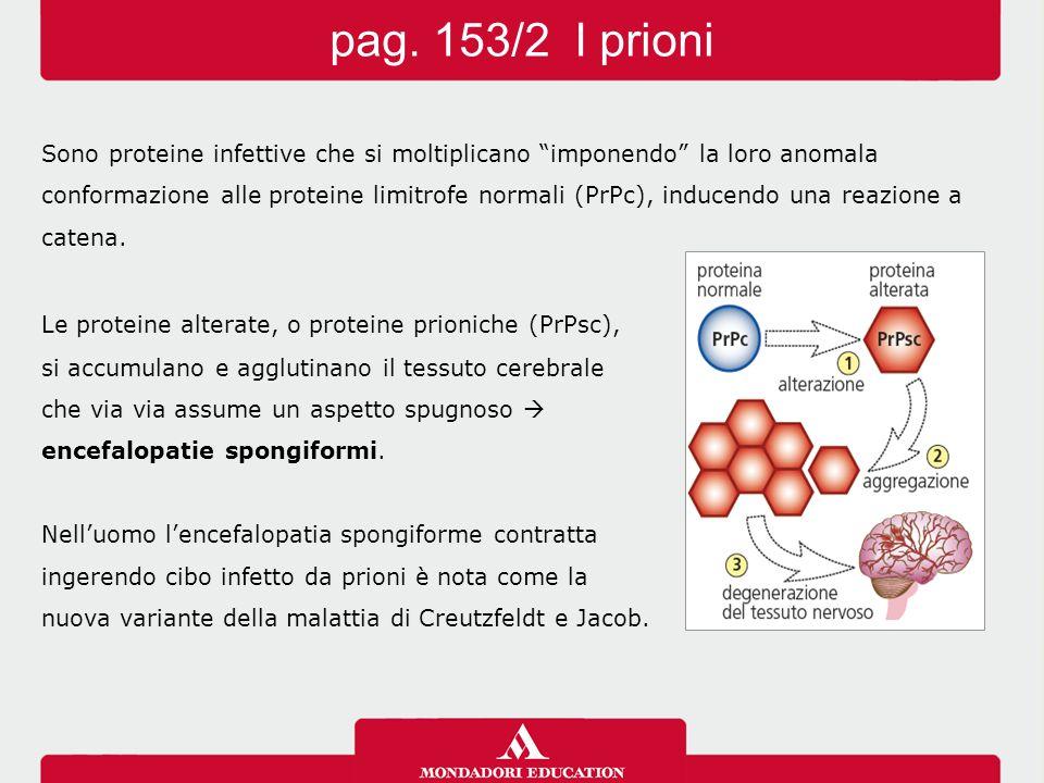 pag. 153/2 I prioni Sono proteine infettive che si moltiplicano imponendo la loro anomala.