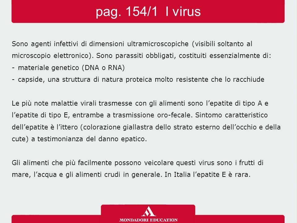 pag. 154/1 I virus Sono agenti infettivi di dimensioni ultramicroscopiche (visibili soltanto al.