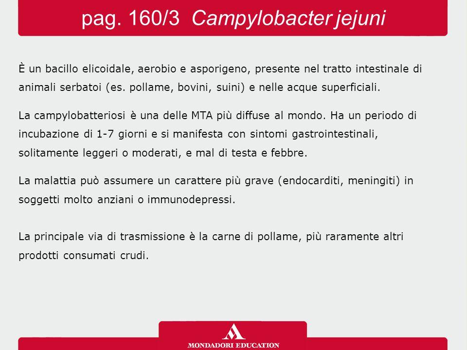 pag. 160/3 Campylobacter jejuni