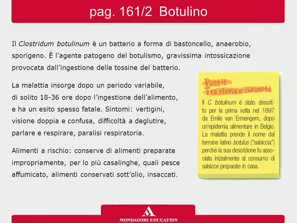 pag. 161/2 Botulino Il Clostridum botulinum è un batterio a forma di bastoncello, anaerobio,
