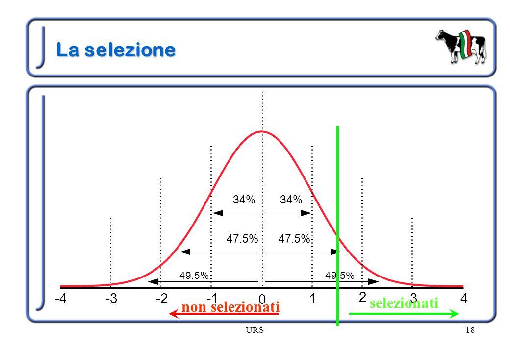 La selezione selezionati non selezionati -4 -3 -2 -1 1 3 4 2 34% 34%
