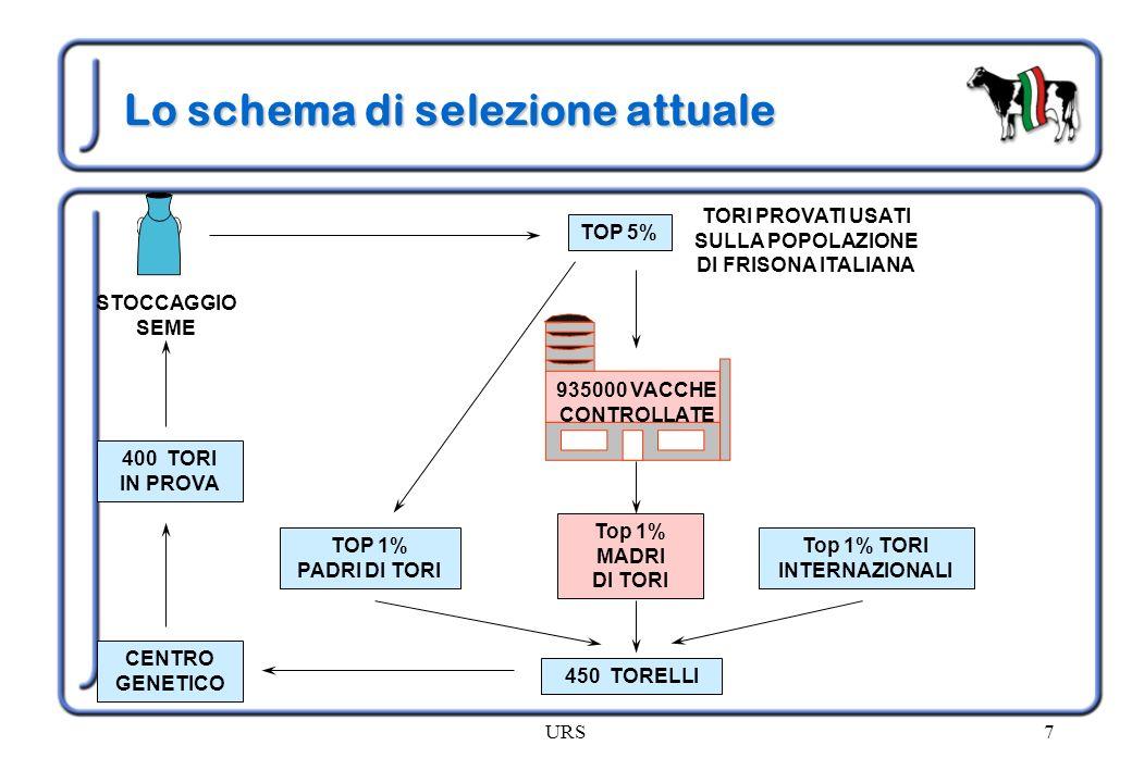 Lo schema di selezione attuale