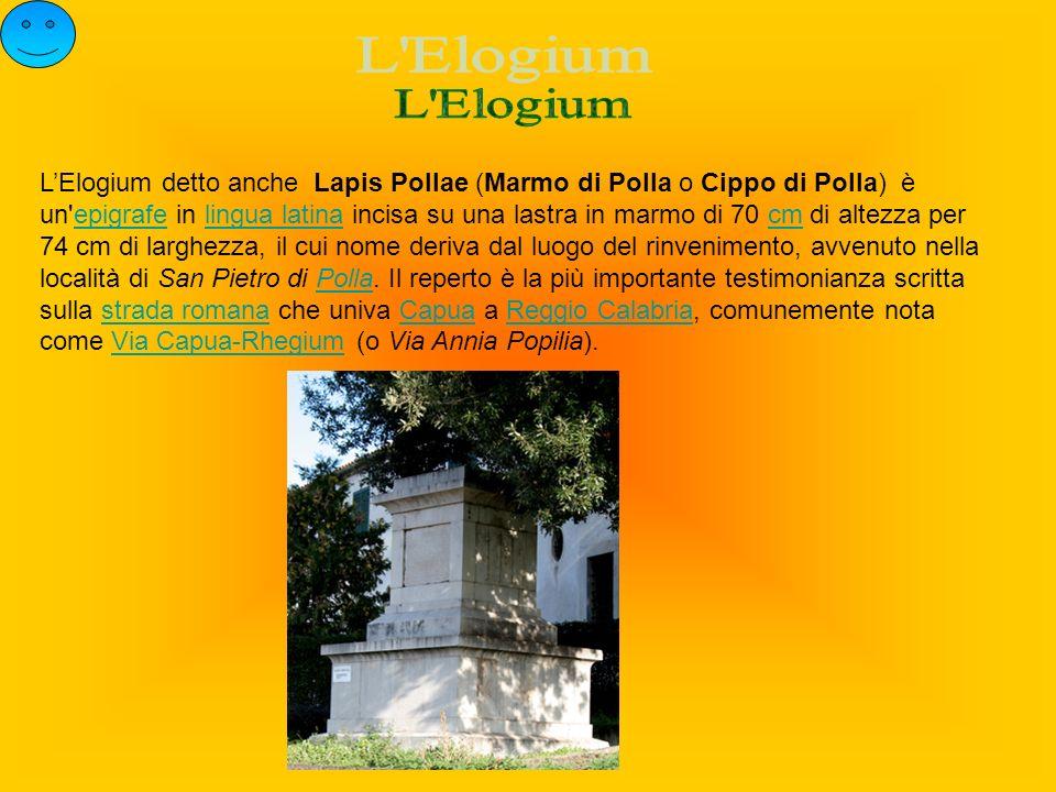 L Elogium