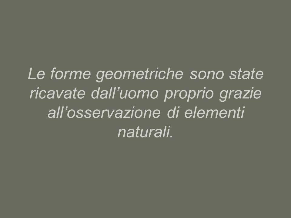 Le forme geometriche sono state ricavate dall'uomo proprio grazie all'osservazione di elementi naturali.