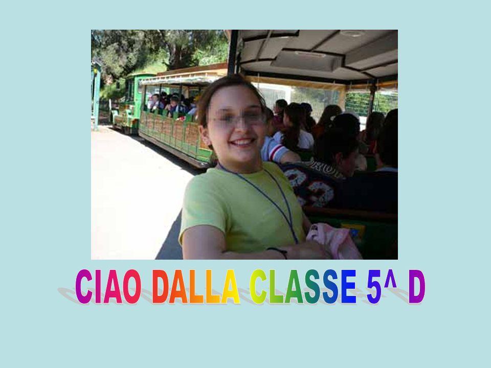 CIAO DALLA CLASSE 5^ D