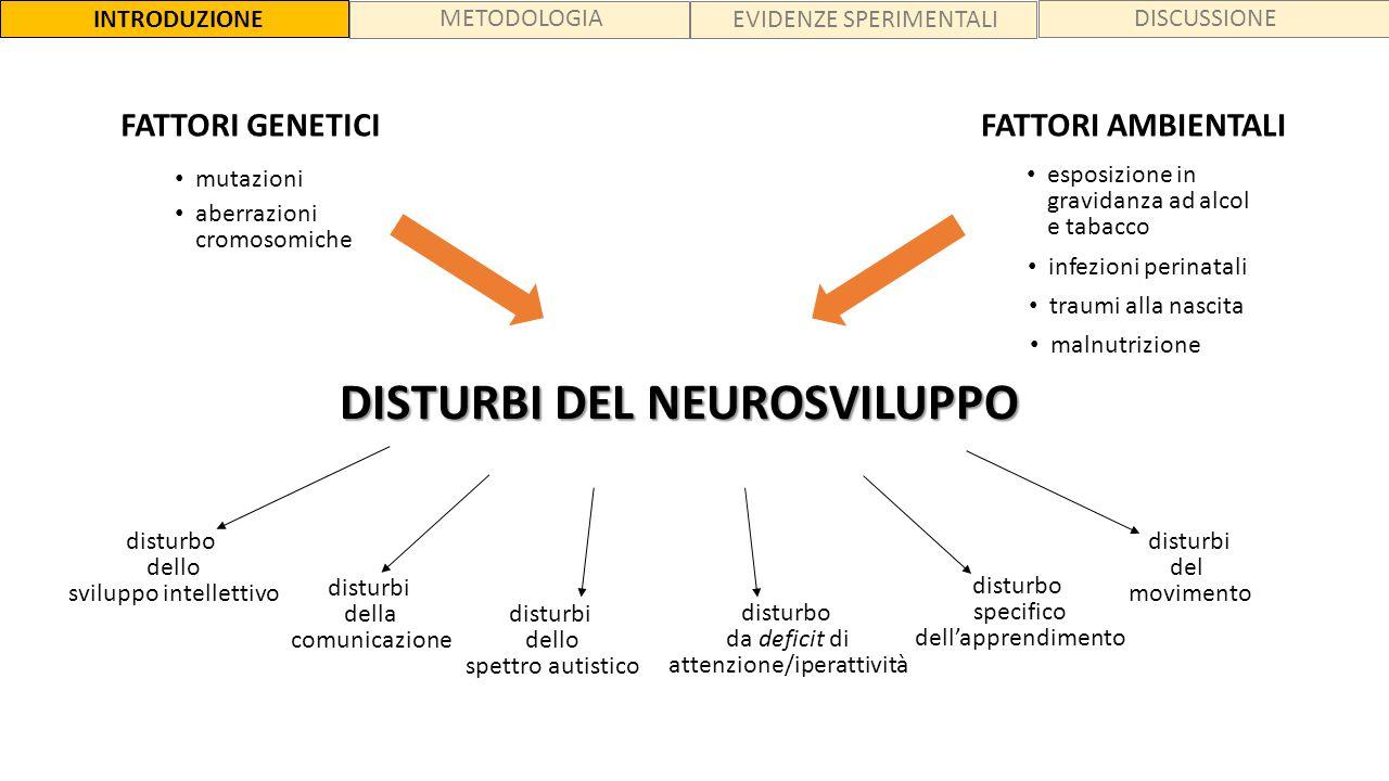 DISTURBI DEL NEUROSVILUPPO