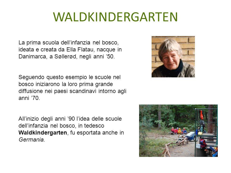 WALDKINDERGARTEN La prima scuola dell'infanzia nel bosco, ideata e creata da Ella Flatau, nacque in Danimarca, a Søllerød, negli anni '50.