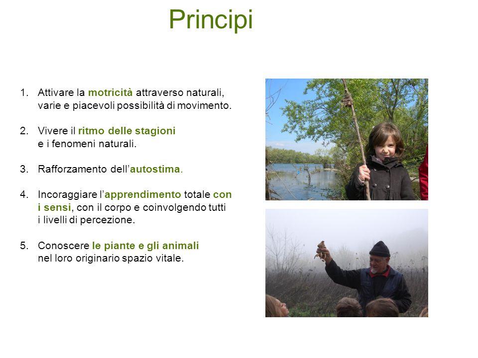 Principi Attivare la motricità attraverso naturali, varie e piacevoli possibilità di movimento. Vivere il ritmo delle stagioni.