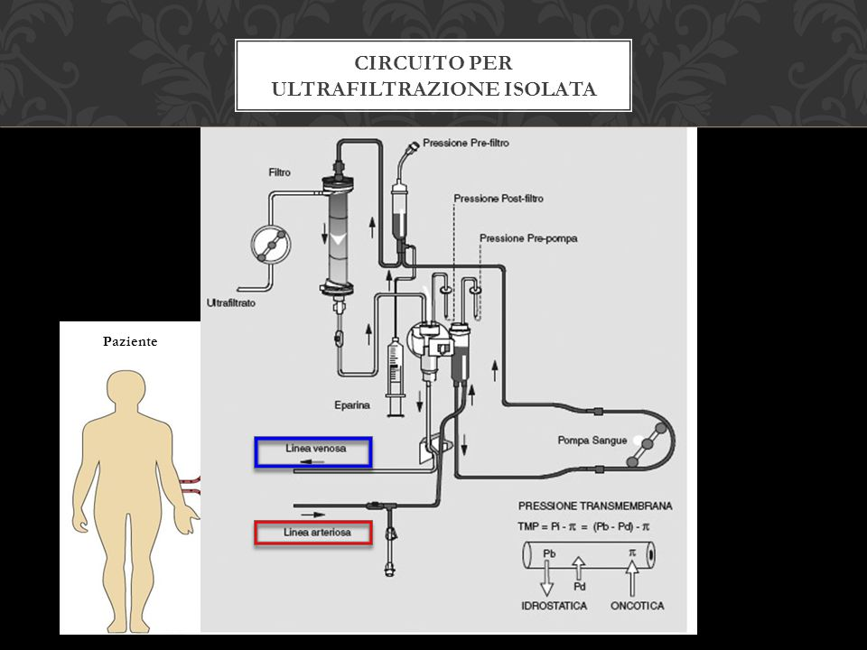 Circuito per ultrafiltrazione isolata