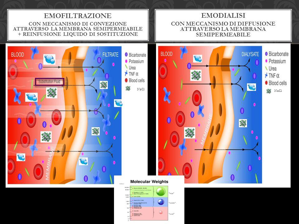con Meccanismo di Diffusione attraverso la membrana semipermeabile