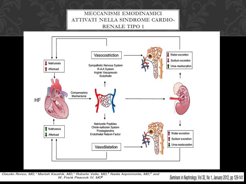 Meccanismi emodinamici attivati nella sindrome cardio- renale tipo 1