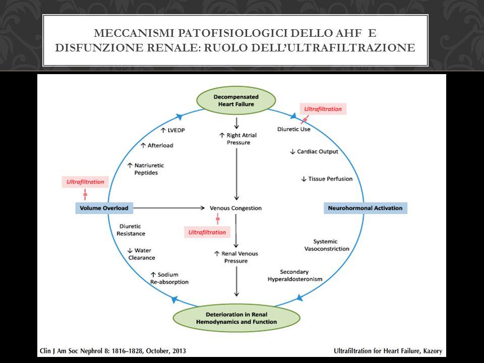 Meccanismi patofisiologici dello ahf e Disfunzione renale: ruolo dell'ultrafiltrazione