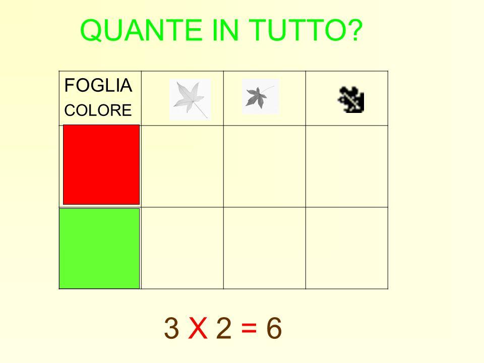 QUANTE IN TUTTO FOGLIA COLORE 3 X 2 = 6