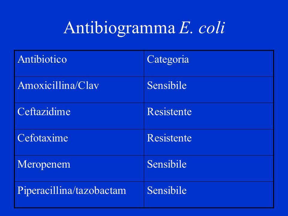 Antibiogramma E. coli Antibiotico Categoria Amoxicillina/Clav