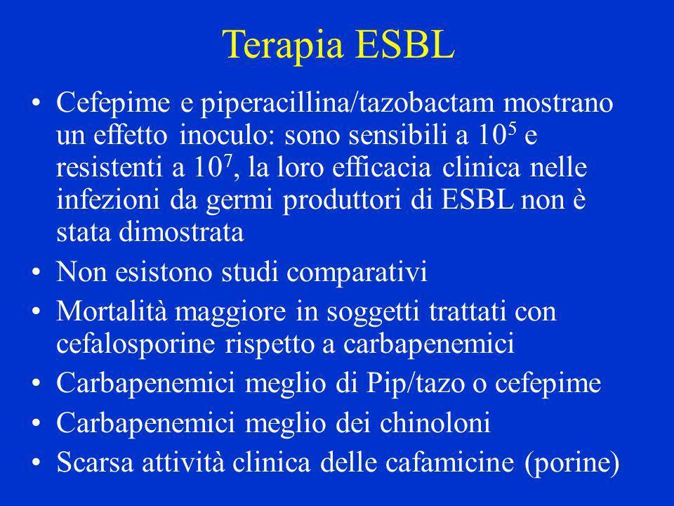 Terapia ESBL