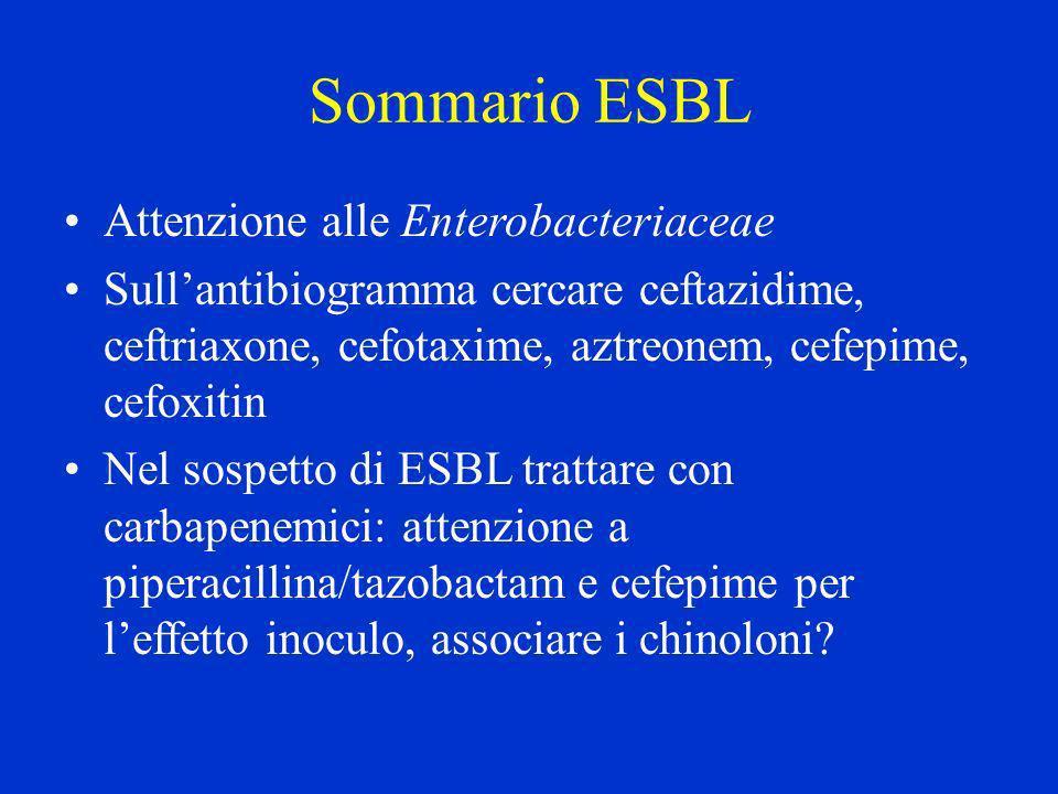 Sommario ESBL Attenzione alle Enterobacteriaceae