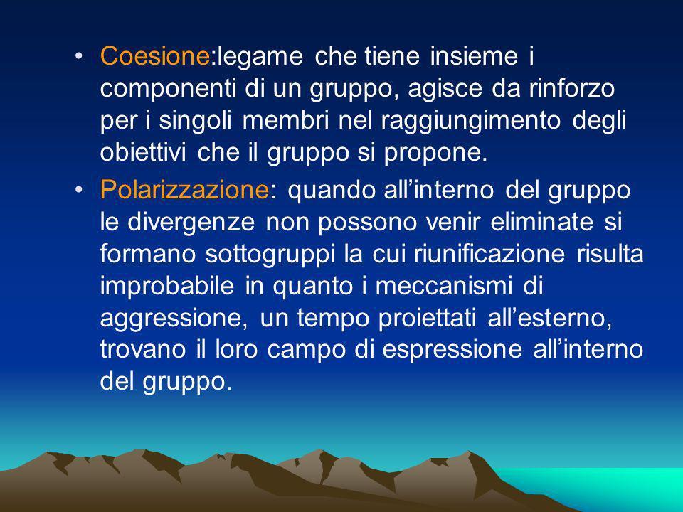 Coesione:legame che tiene insieme i componenti di un gruppo, agisce da rinforzo per i singoli membri nel raggiungimento degli obiettivi che il gruppo si propone.