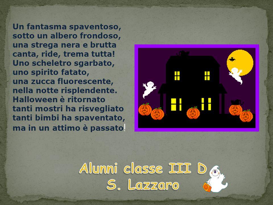 Alunni classe III D S. Lazzaro