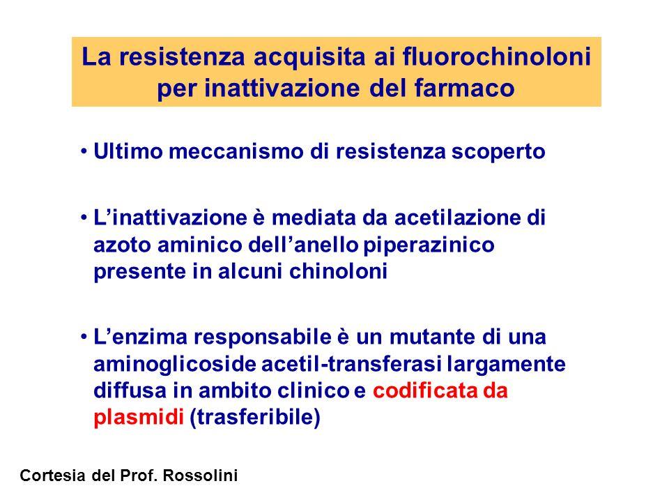 La resistenza acquisita ai fluorochinoloni