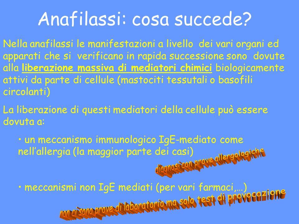 Anafilassi: cosa succede