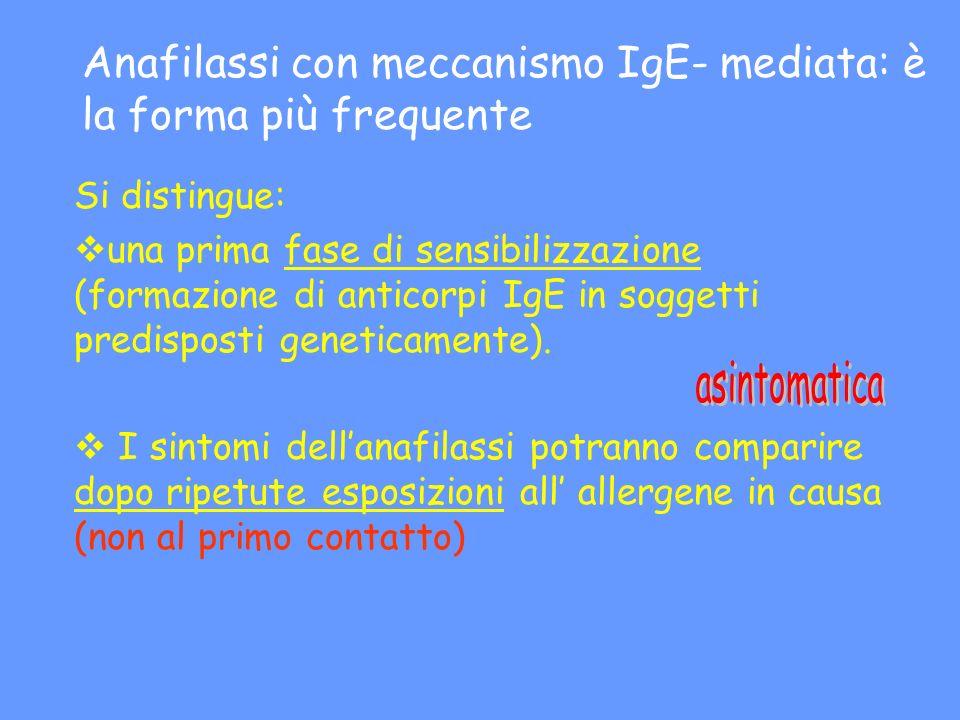 Anafilassi con meccanismo IgE- mediata: è la forma più frequente