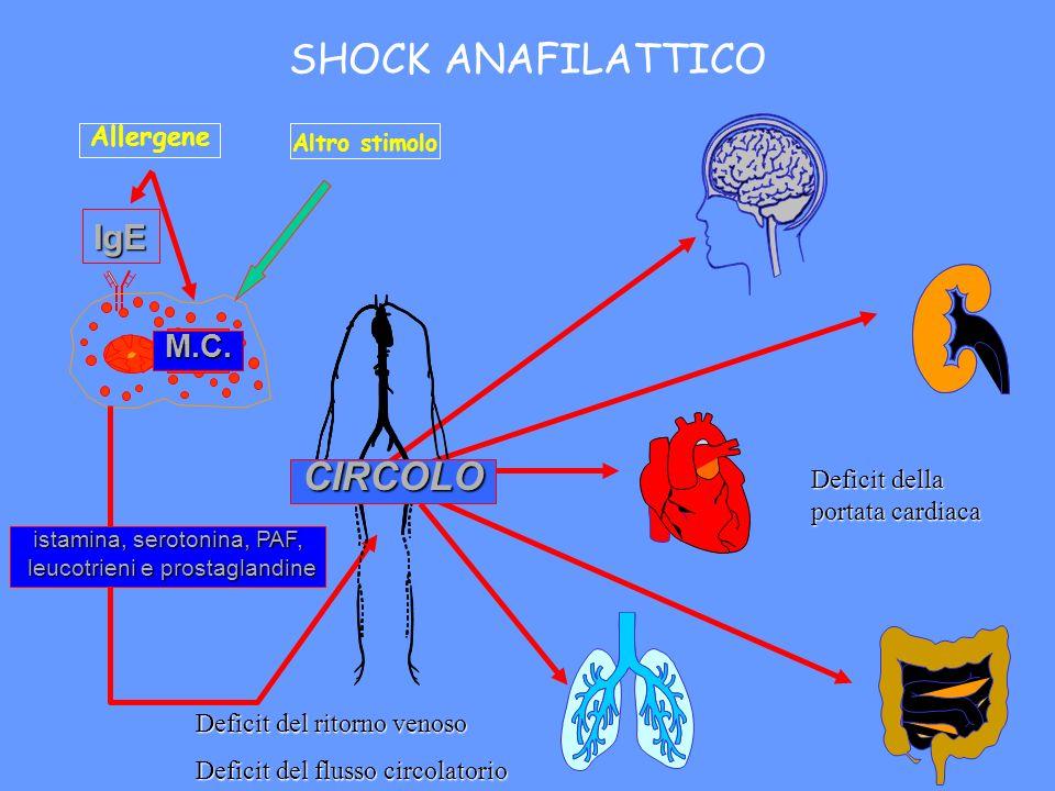 SHOCK ANAFILATTICO CIRCOLO IgE M.C. Allergene