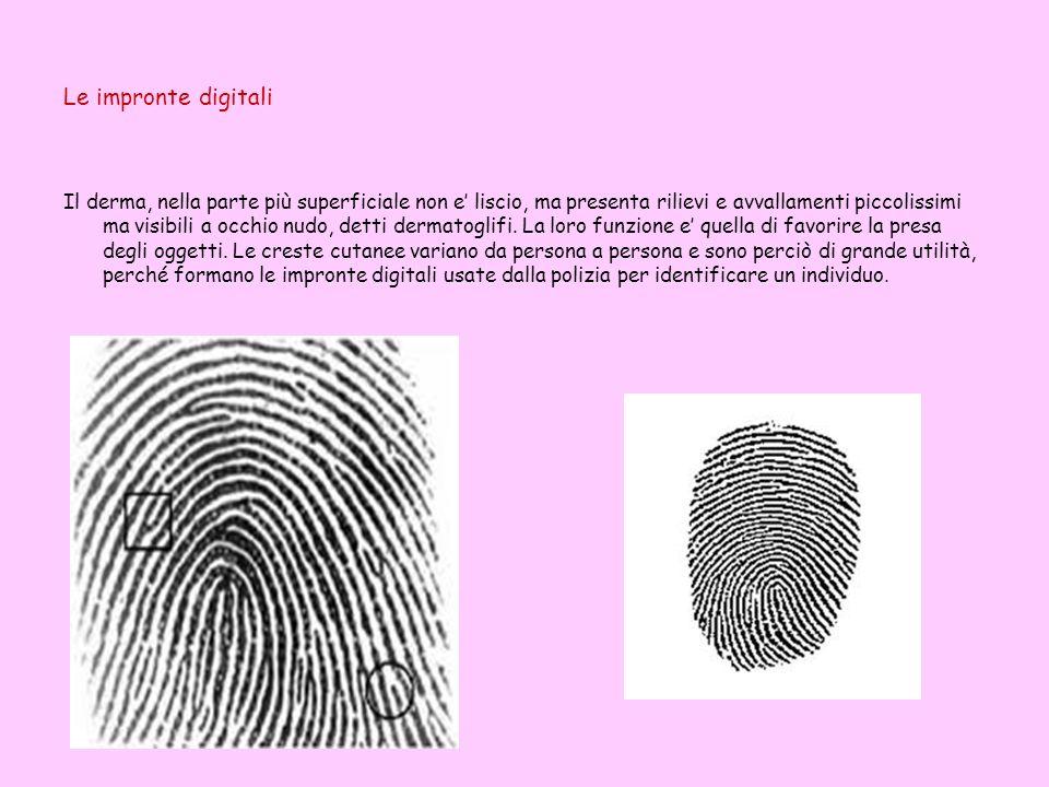 Le impronte digitali