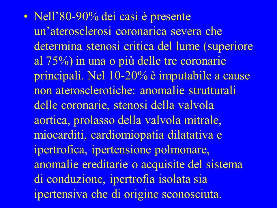 Nell'80-90% dei casi è presente un'aterosclerosi coronarica severa che determina stenosi critica del lume (superiore al 75%) in una o più delle tre coronarie principali.