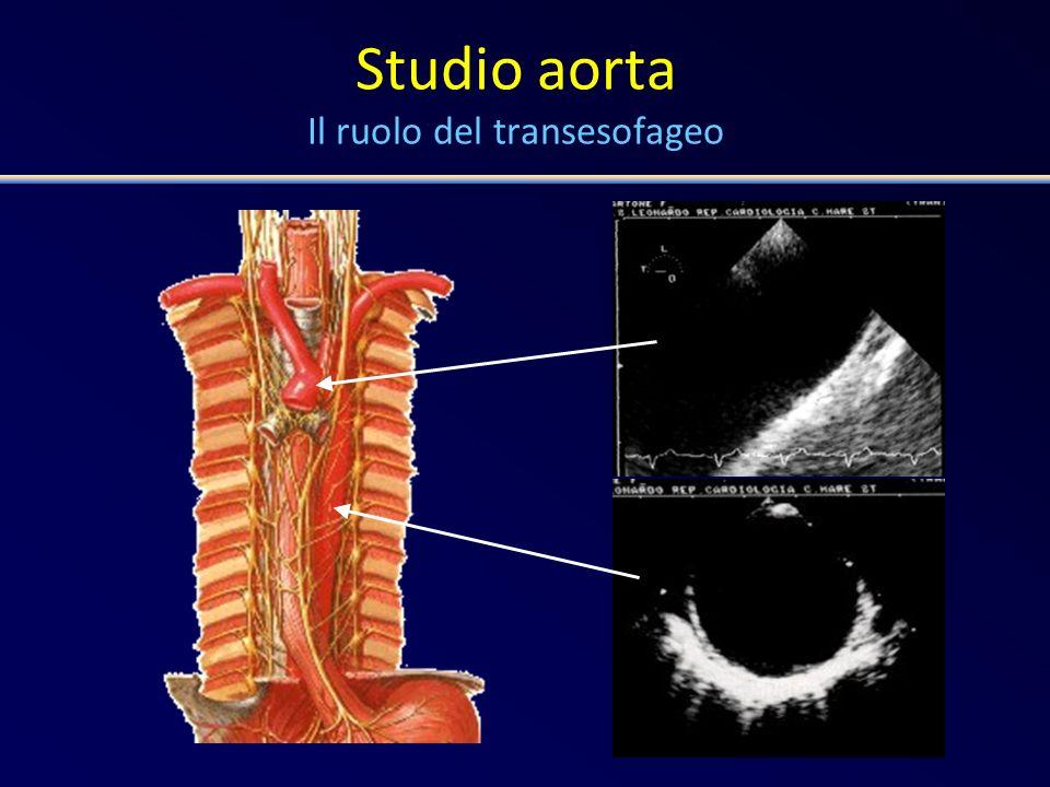 Studio aorta Il ruolo del transesofageo