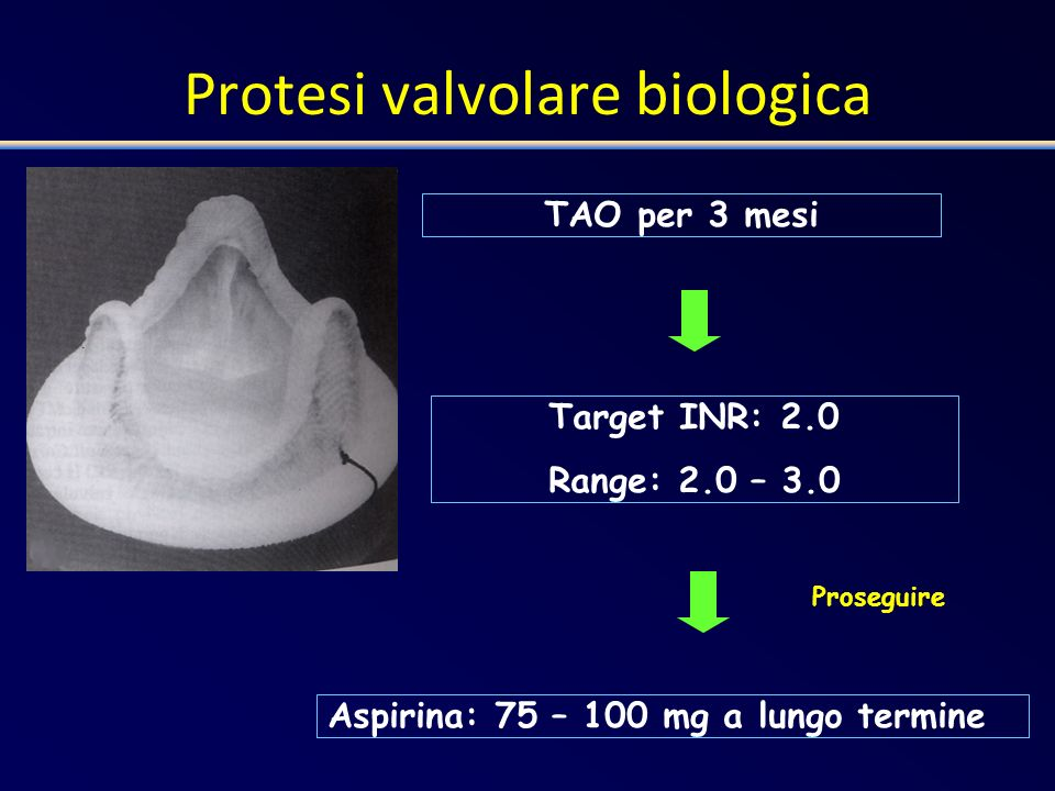 Protesi valvolare biologica