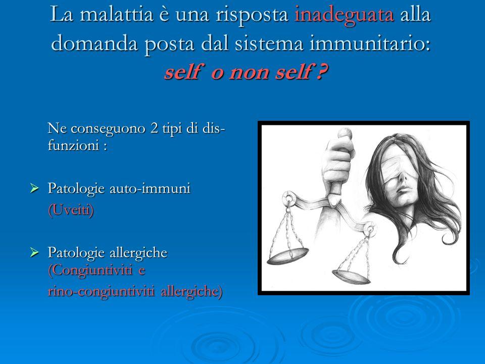 La malattia è una risposta inadeguata alla domanda posta dal sistema immunitario: self o non self