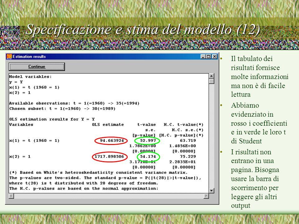 Specificazione e stima del modello (12)