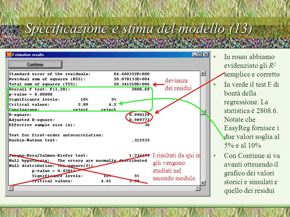 Specificazione e stima del modello (13)