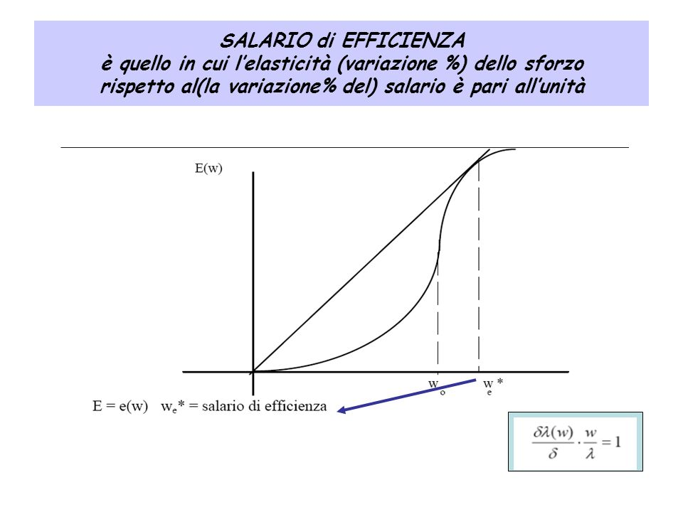 SALARIO di EFFICIENZA è quello in cui l'elasticità (variazione %) dello sforzo rispetto al(la variazione% del) salario è pari all'unità