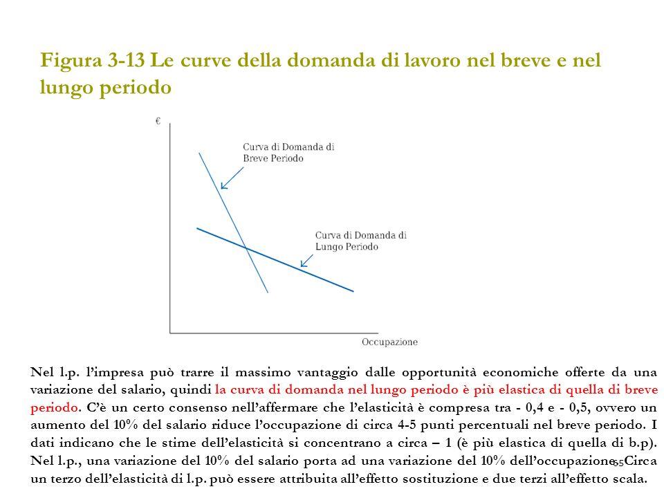Figura 3-13 Le curve della domanda di lavoro nel breve e nel lungo periodo