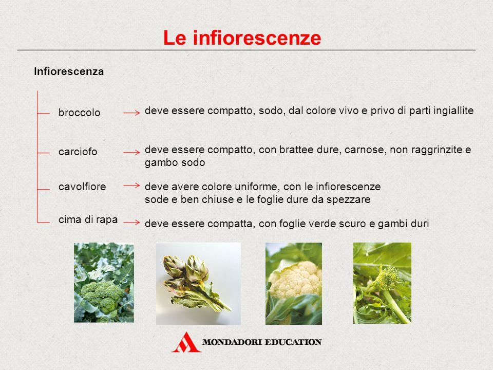 Le infiorescenze Infiorescenza broccolo