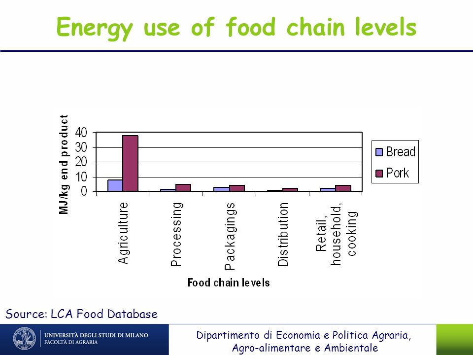 Energy use of food chain levels