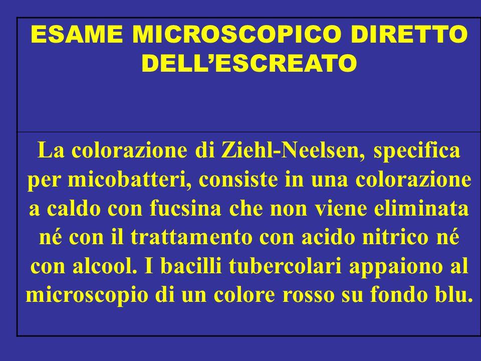 ESAME MICROSCOPICO DIRETTO DELL'ESCREATO