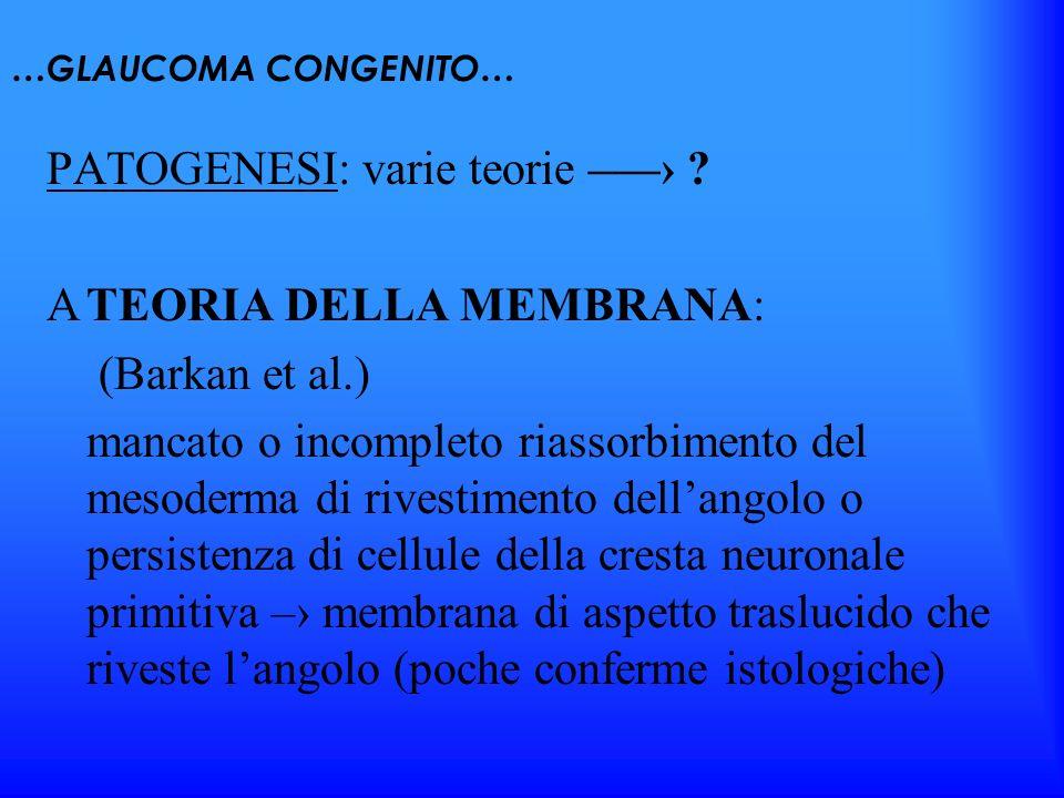 PATOGENESI: varie teorie –—› TEORIA DELLA MEMBRANA: (Barkan et al.)
