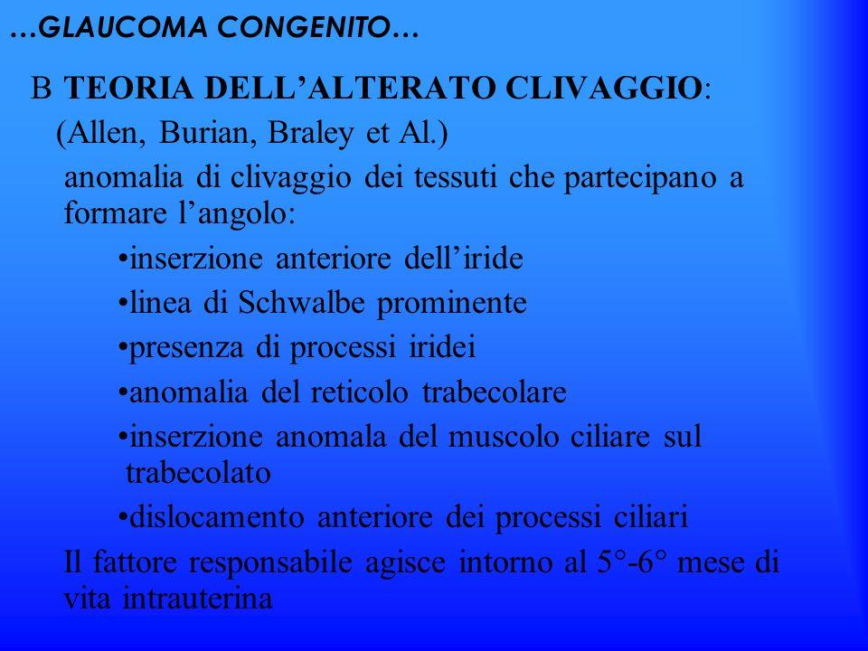 TEORIA DELL'ALTERATO CLIVAGGIO: (Allen, Burian, Braley et Al.)
