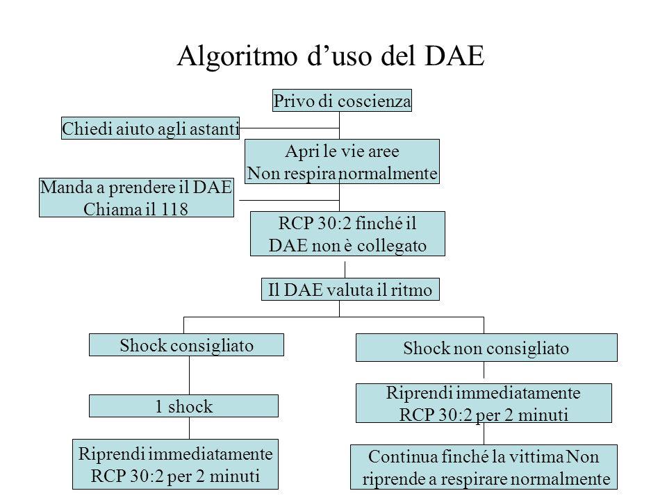 Algoritmo d'uso del DAE