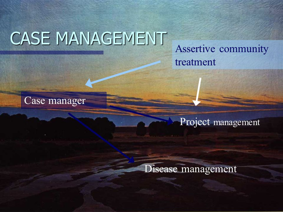 CASE MANAGEMENT Assertive community treatment Case manager