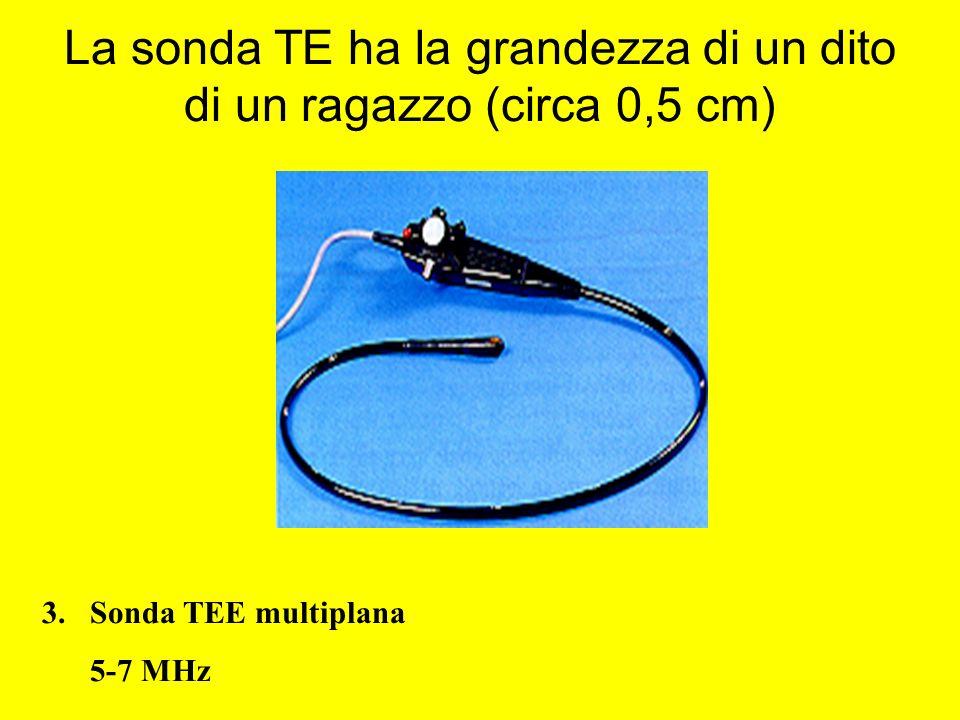 La sonda TE ha la grandezza di un dito di un ragazzo (circa 0,5 cm)