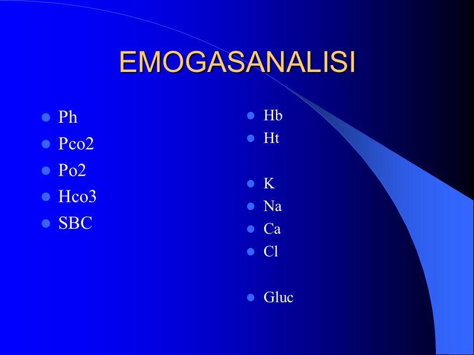 EMOGASANALISI Ph Pco2 Po2 Hco3 SBC Hb Ht K Na Ca Cl Gluc