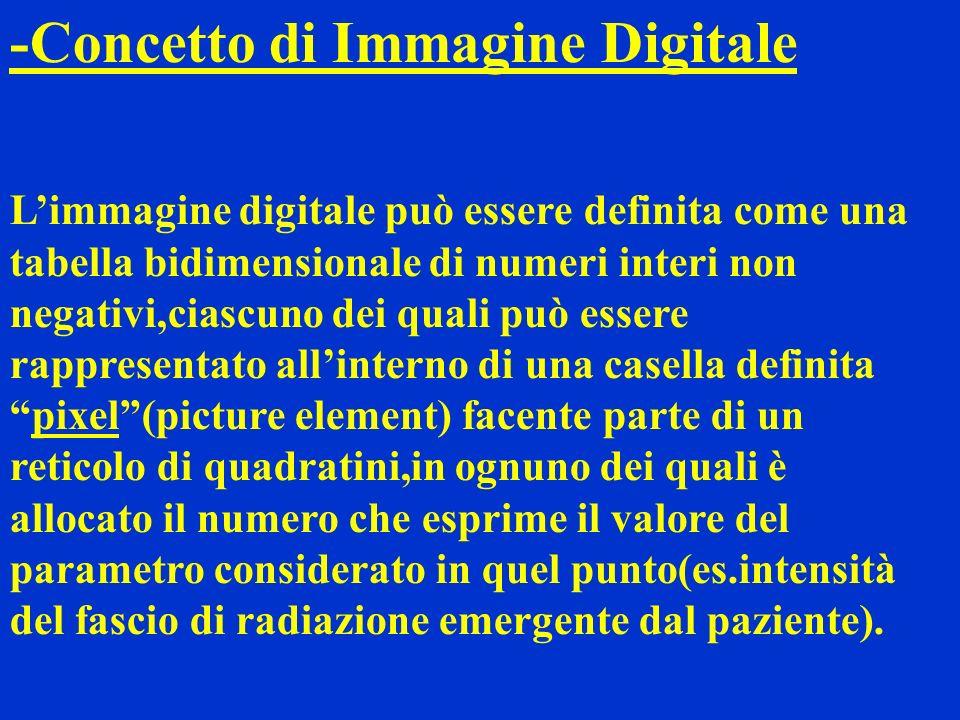 -Concetto di Immagine Digitale